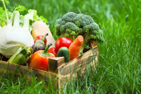 Initiez-vous au plaisir de la raw food diet
