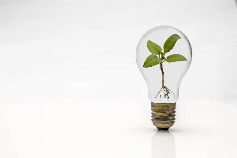 Les entrepreneurs/investisseurs à la recherche d'investissements de plus en plus socialement responsables