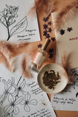 parfum nolença