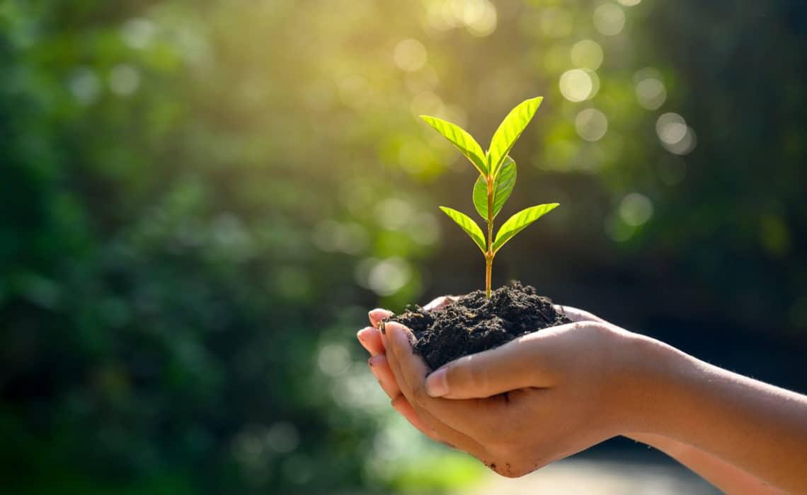 """Cinq façons dont la crise peut vous aider à développer votre """"growth mindset"""""""